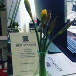 Изучение немецкого языка A2 в Германии - BergMANN
